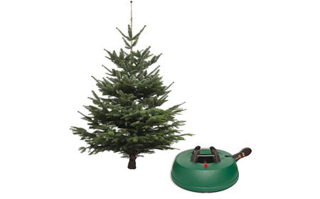 Weihnachtsbaum Poco Domäne.Künstliche Weihnachtsbäume Christbaumständer Günstig Bei Roller
