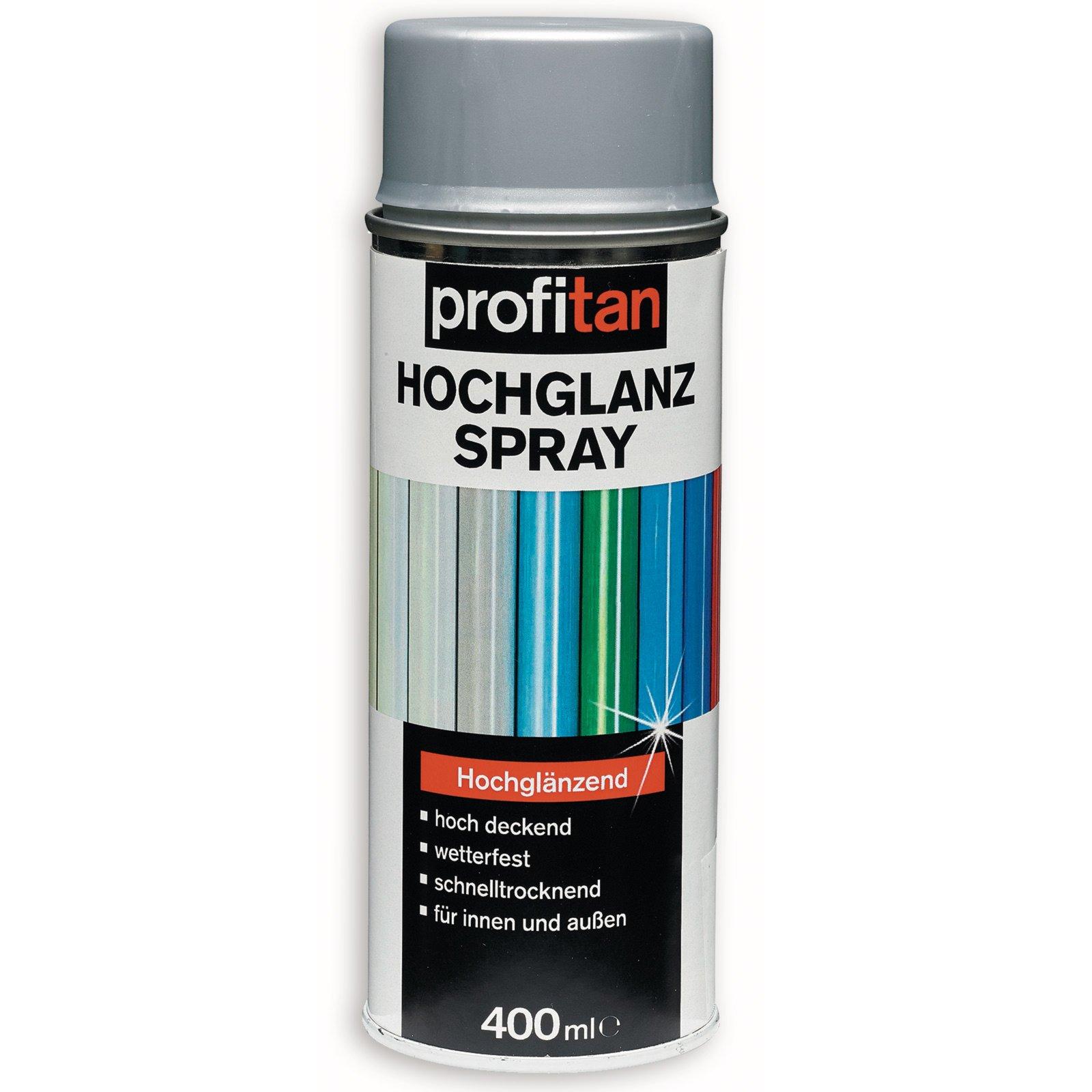 profitan Hochglanzspray - silbergrau - 400 ml