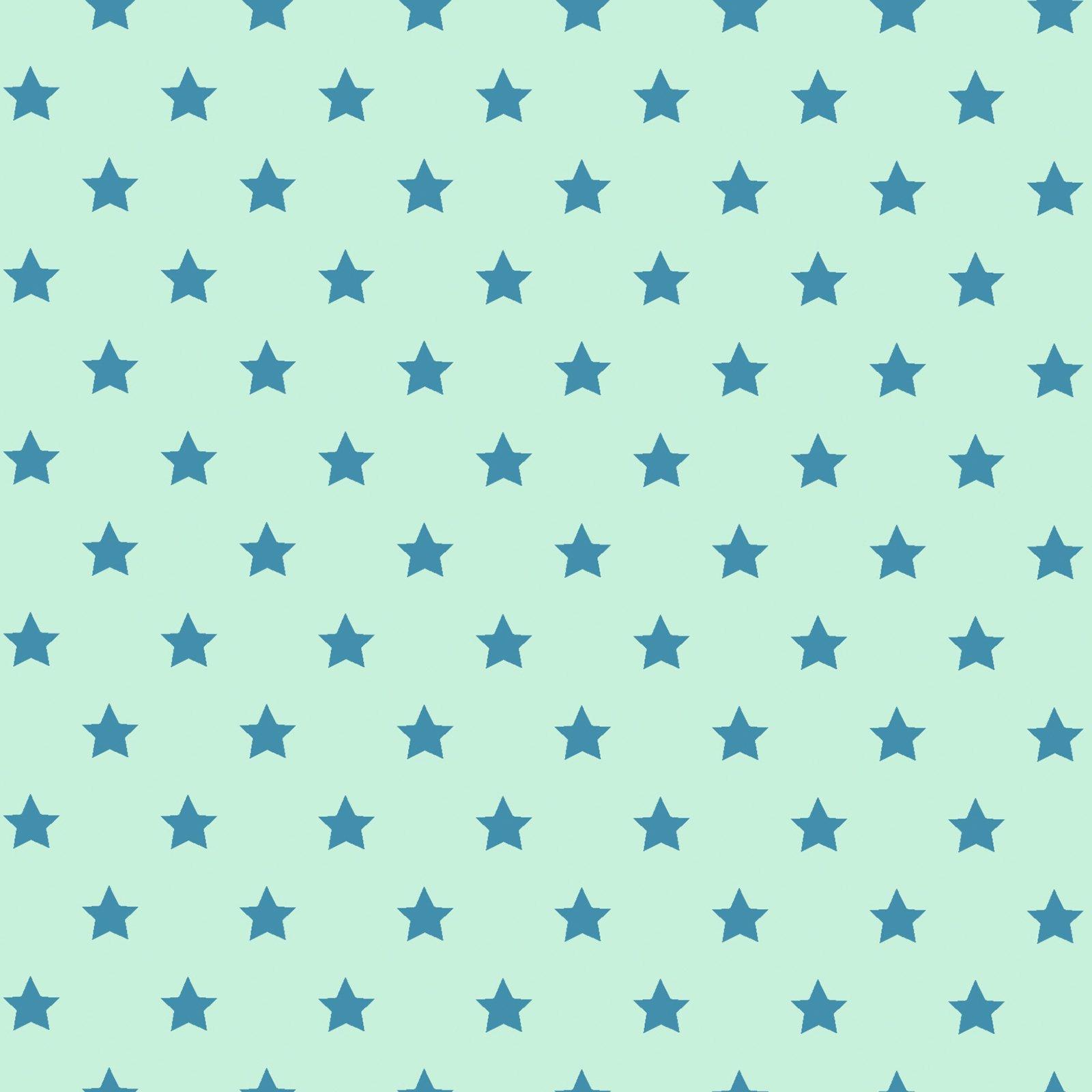 Jersey-Stoff - mint - Sterne - Meterware