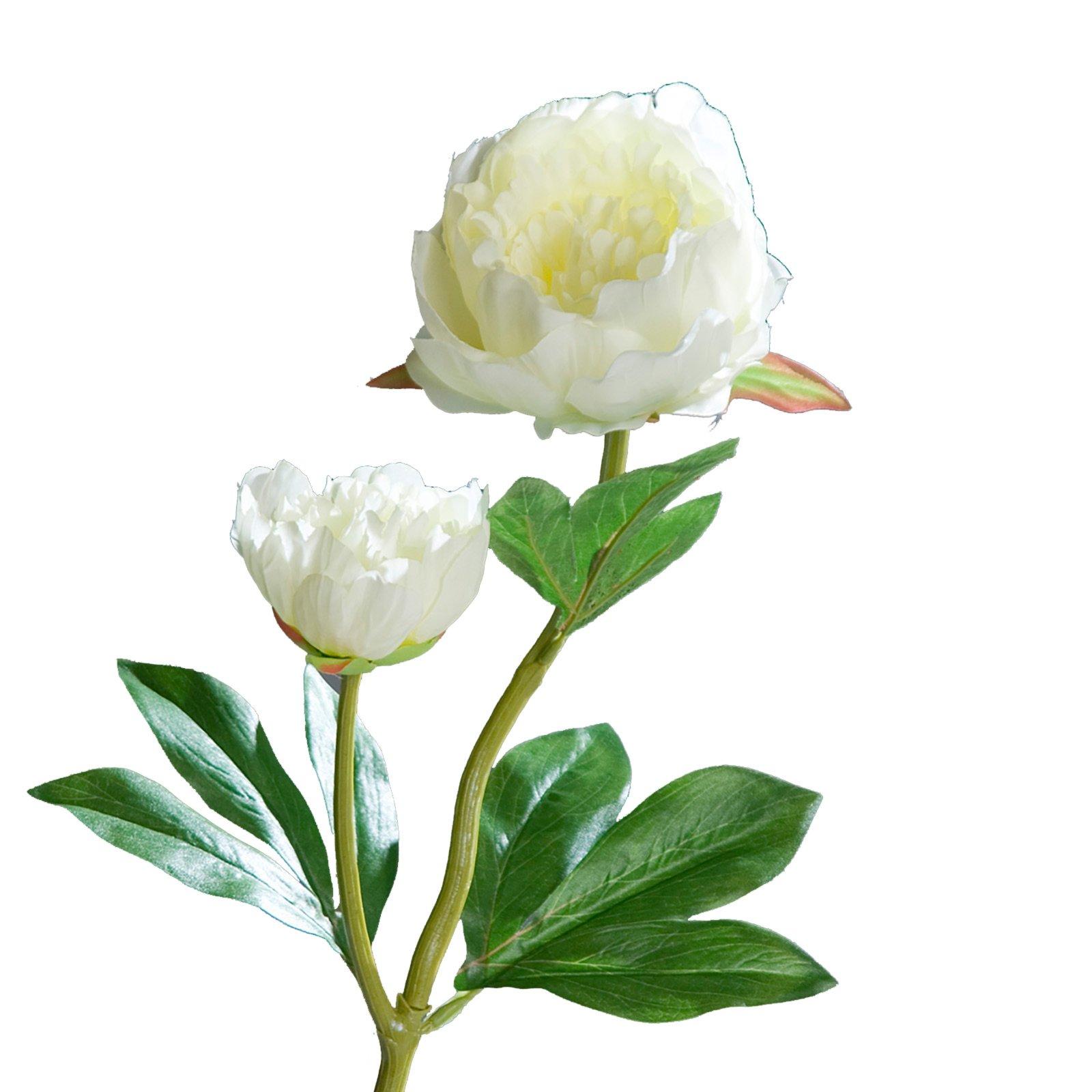Pfingstrose p onie kunstblume creme kunstpflanzen for Wohnaccessoires wohnzimmer