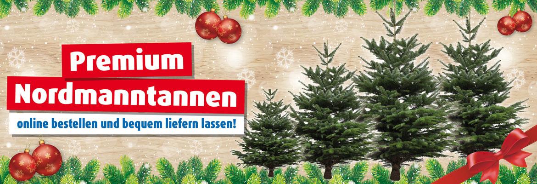 Künstliche Weihnachtsbäume & Christbaumständer günstig bei ROLLER
