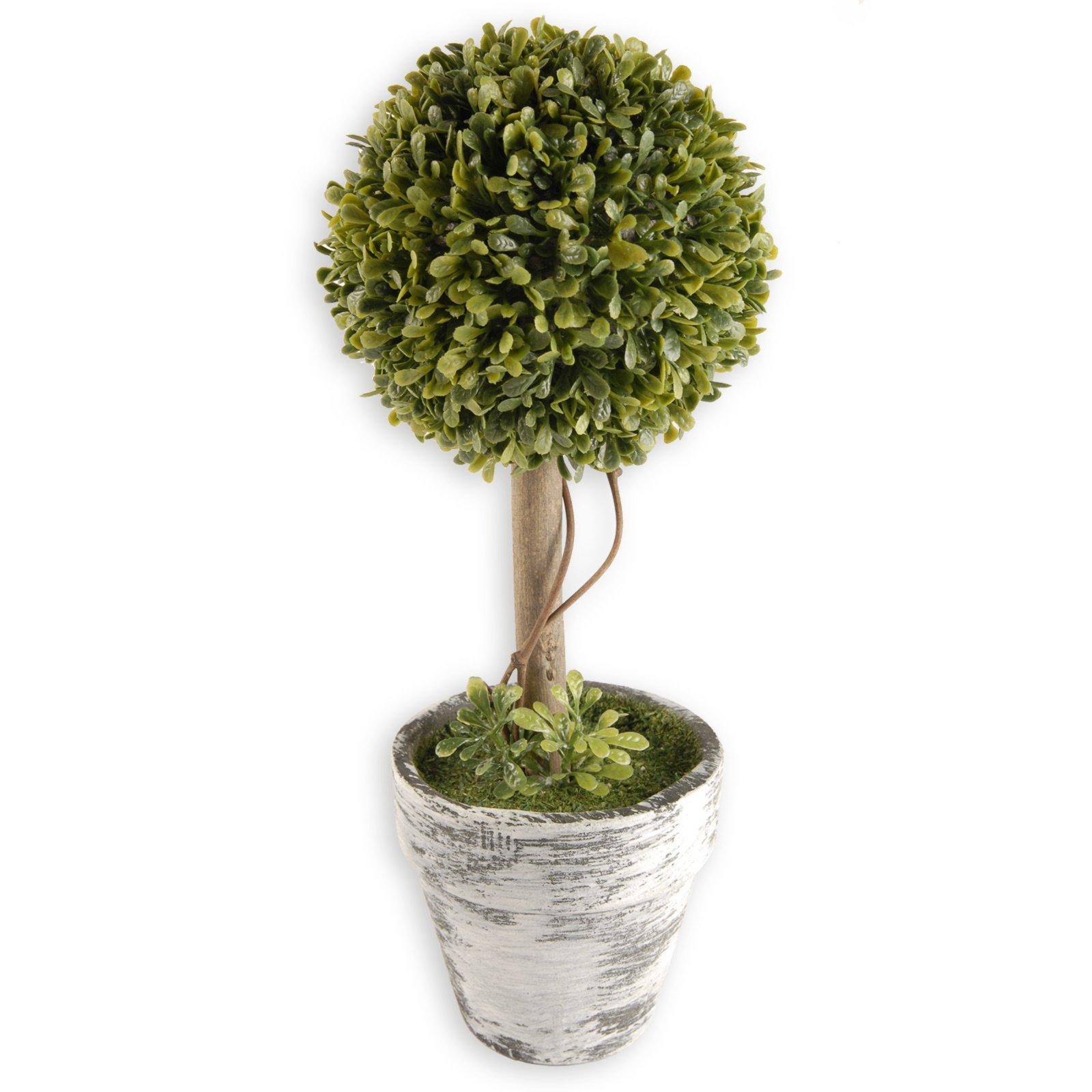 buchsbaum schneiden kugel buchsbaum schneiden baumschnitt ber ideen zu buchsbaum schneiden auf. Black Bedroom Furniture Sets. Home Design Ideas