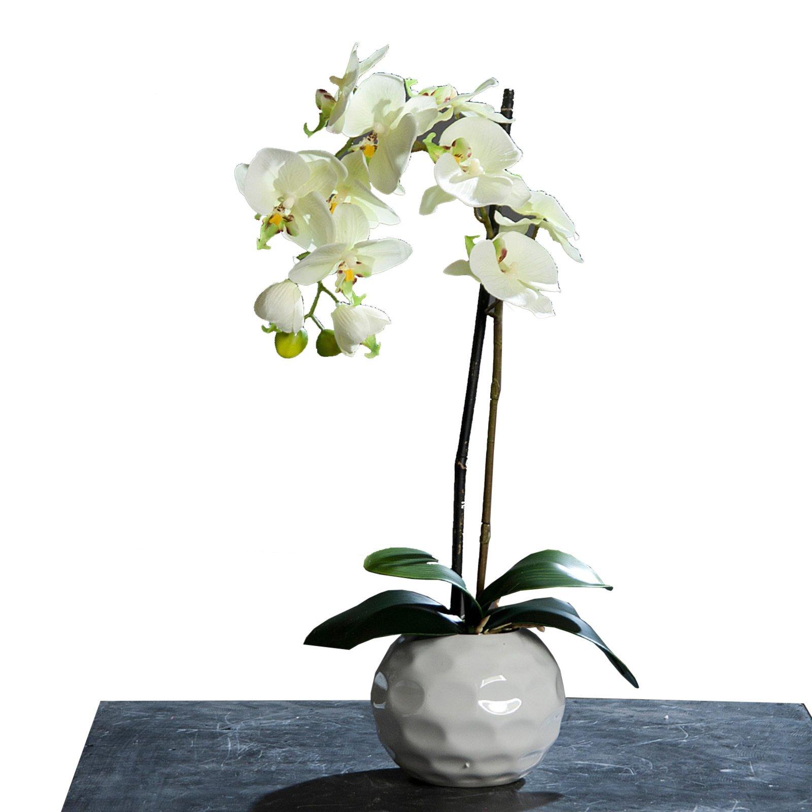 Originelle B Cherregale wohnzimmer deko grün creme vase surfinser com