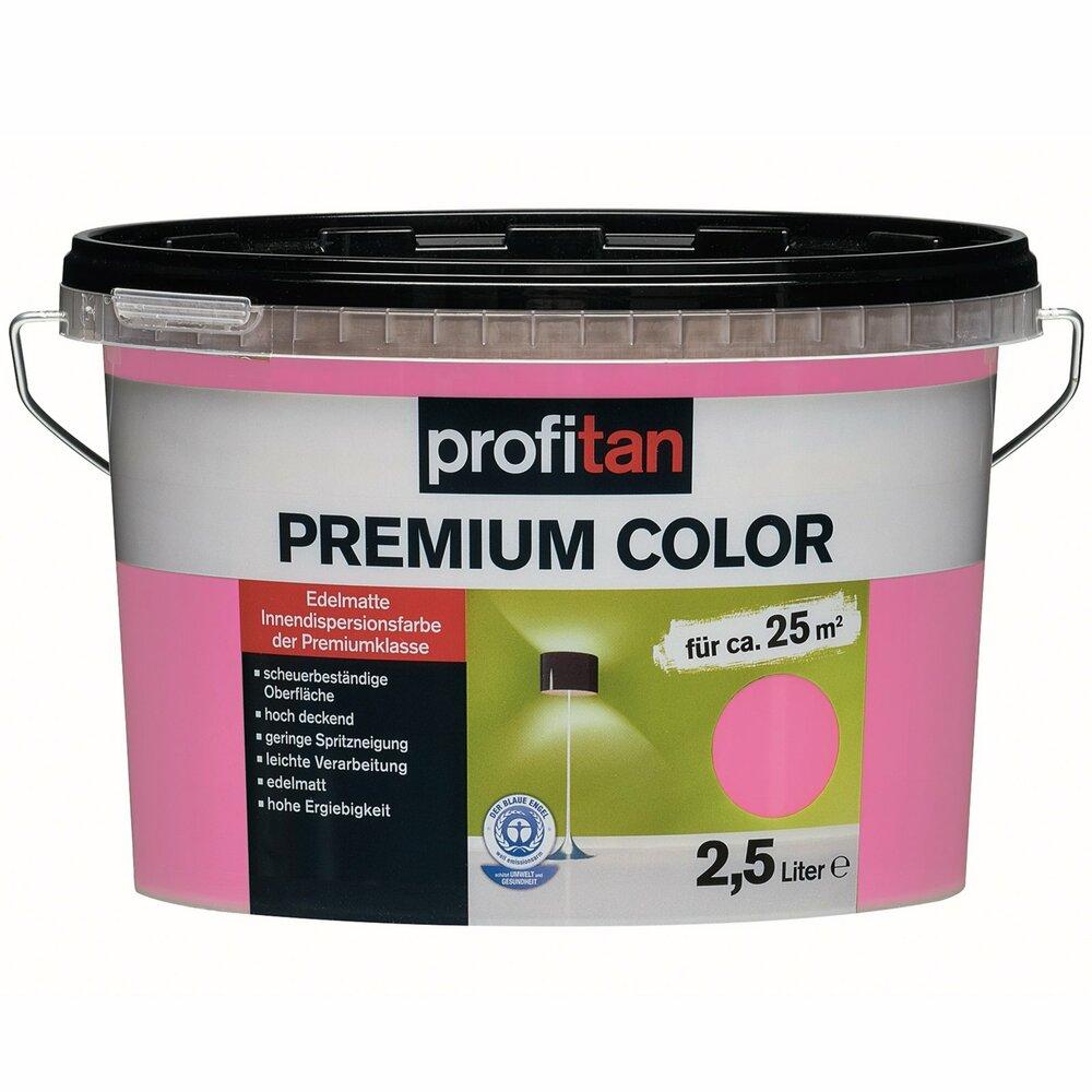Profitan wandfarbe premium color pink cashmere edelmatt 2 5 liter wandfarben - Wandfarbe cashmere ...