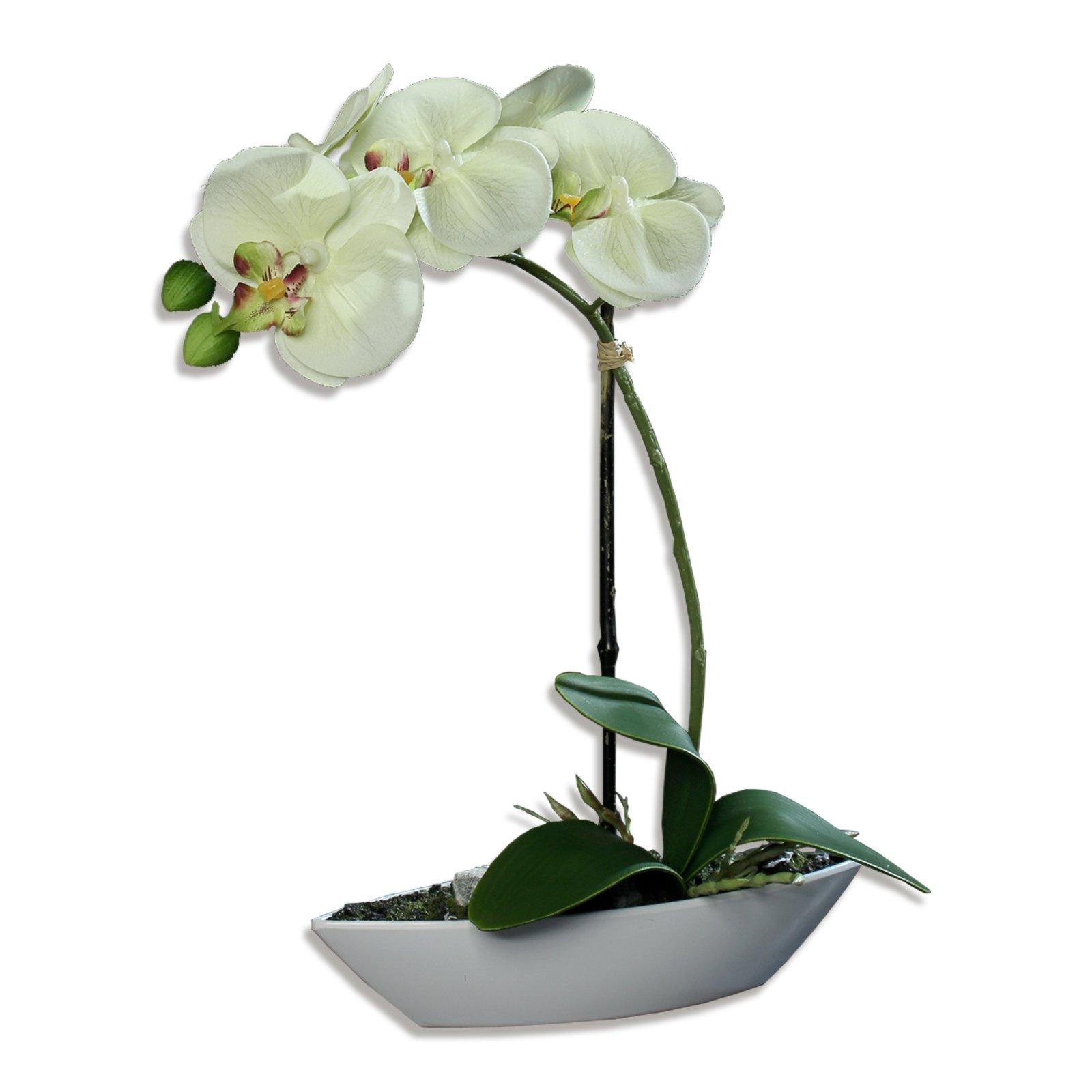 Orchidee-Phalaenopis - creme - Kunstpflanze