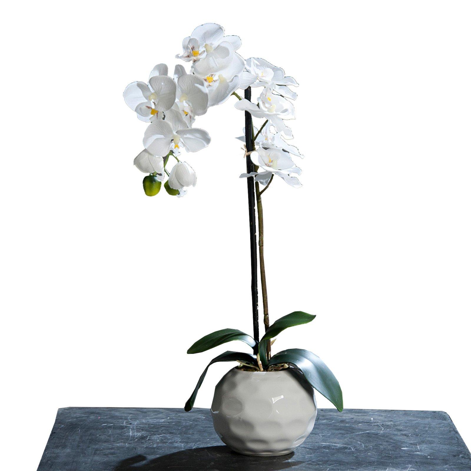 Wohnzimmer deko gr n creme vase for Wohnaccessoires wohnzimmer