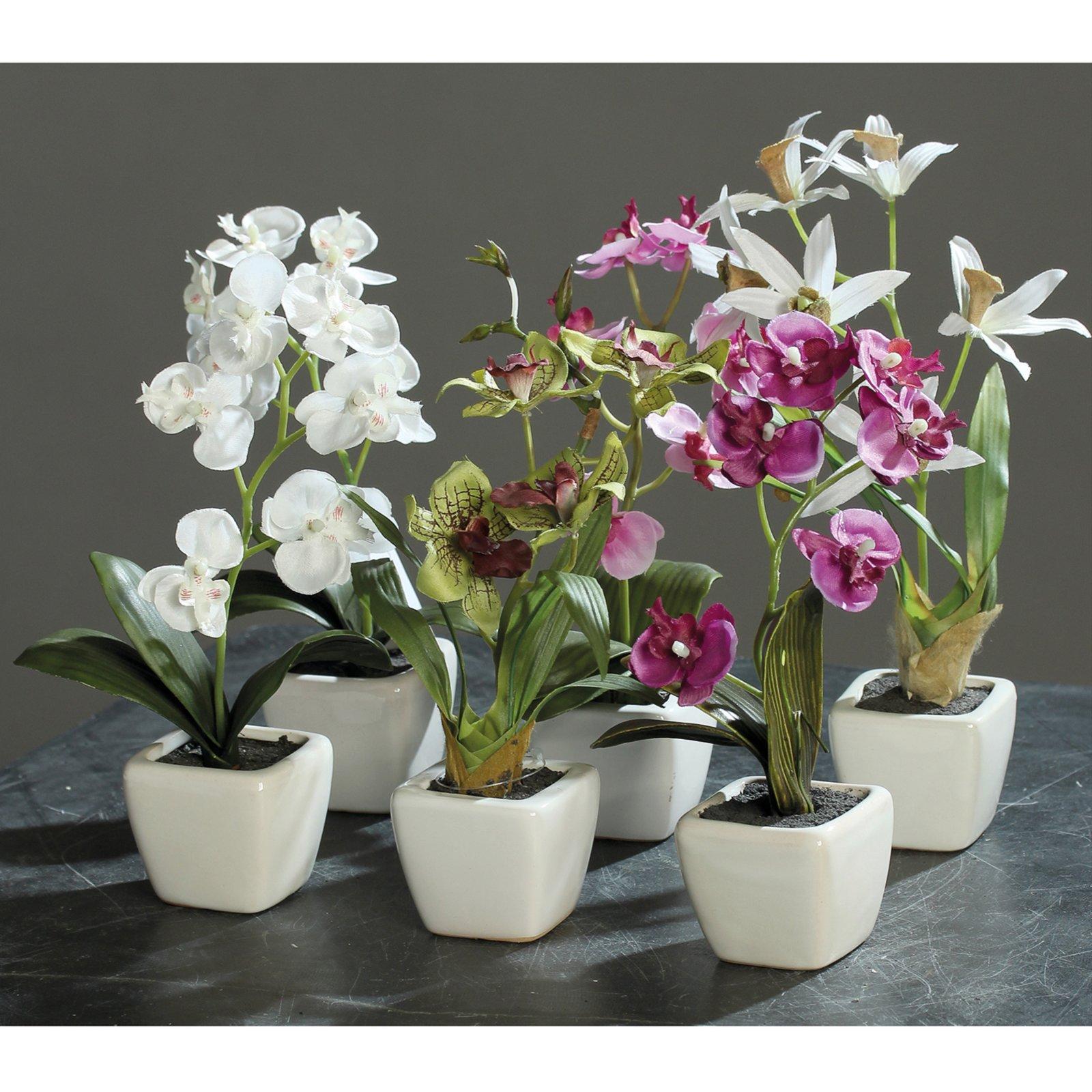 Mini-Orchidee - Kunstpflanze - 5-fach sortiert