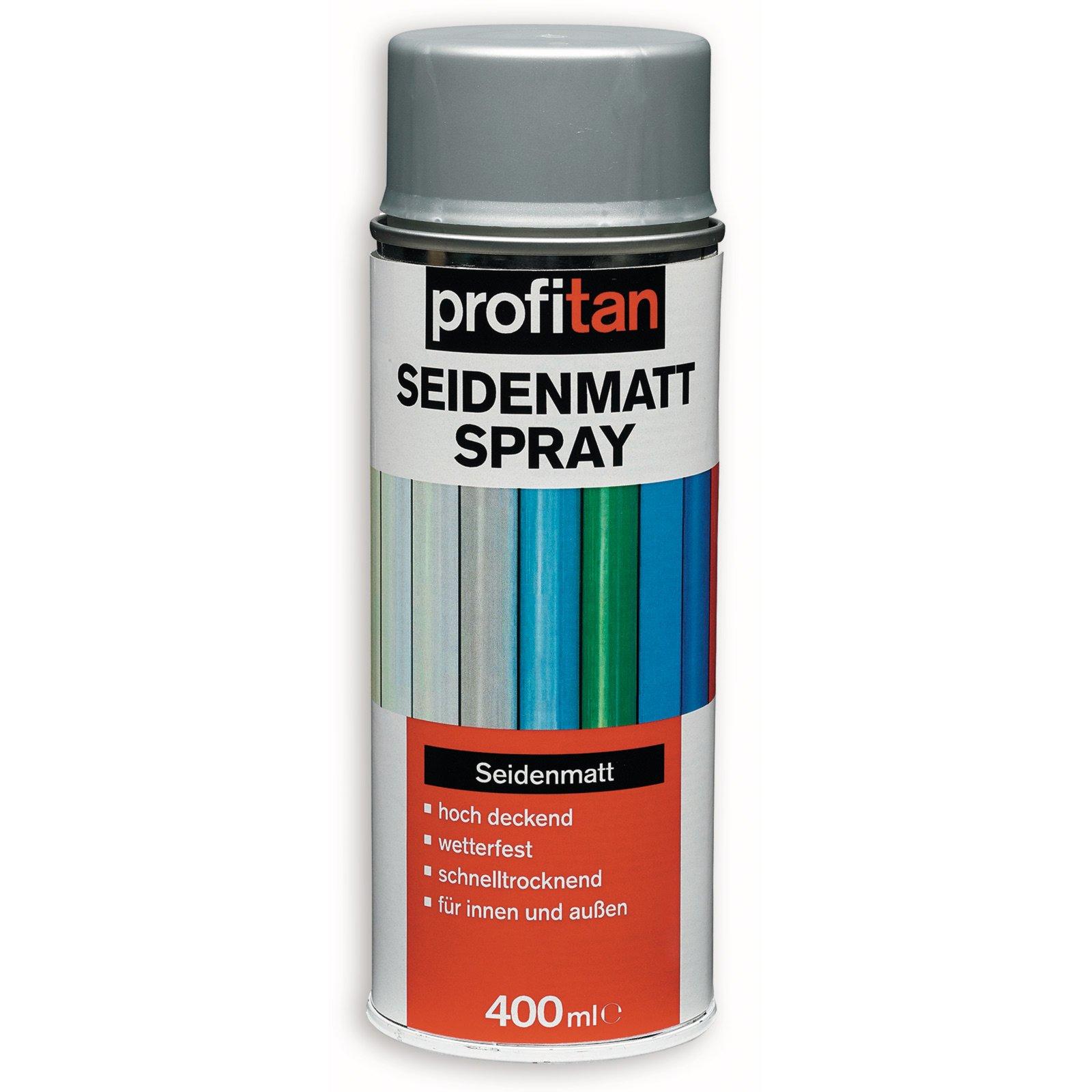 profitan Seidenmattspray - silbergrau - 400 ml