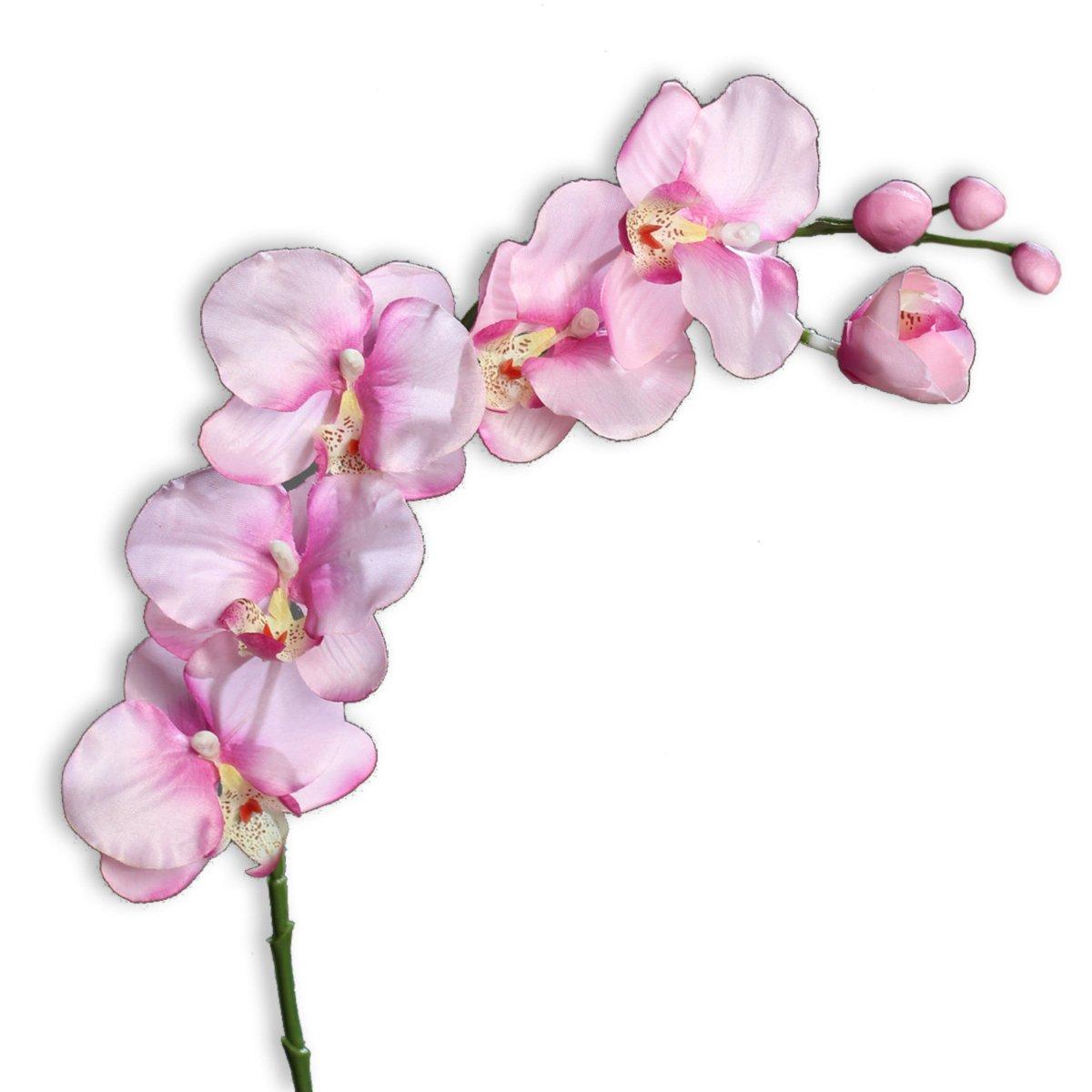 Orchidee - rosa - 6 Blüten - 72 cm